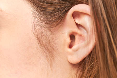 closeup picture of young woman ear Stock Photo