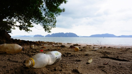 sea scape: Garbage on the beach