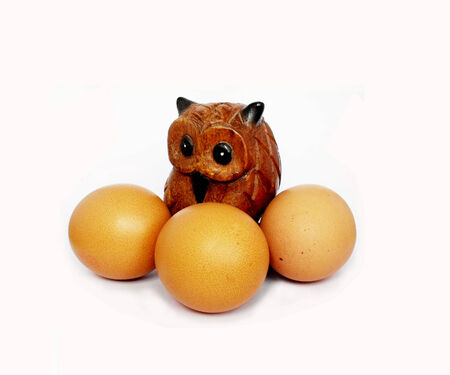 tripple: The brown owl with tripple egg on white background
