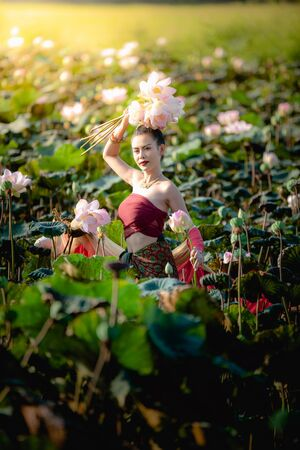 Asian woman collecting lotus flowers and she wear Traditional Thai dresses, Thailand 스톡 콘텐츠 - 133132384