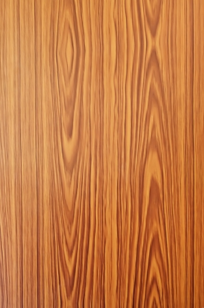 Wood texture  Ideal for backgrounds  photo