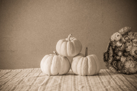 Tiny pumpkins and dry flower  on tabl stil llife photo