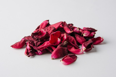 Roses petal on the ground Stock Photo