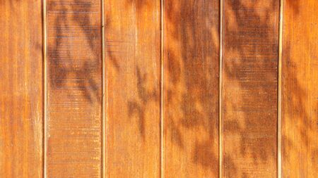 dimly: Sun dimly light on wood for background. Stock Photo