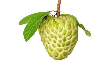 Fresh custard apple on white background. Stock Photo