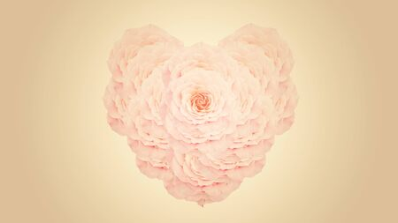 heart shape from a pink rose, vintage color.