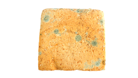 Bread moldy on a white background.