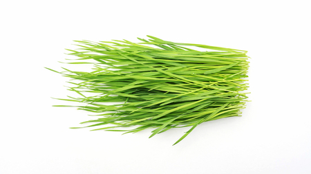 wheatgrass plant on a white background. 免版税图像