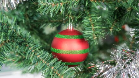 Red ball hanging on a Christmas tree.