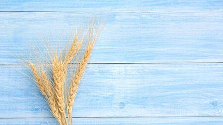 Dry wheat ears on a blue wooden table. Reklamní fotografie