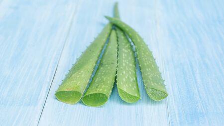 Green aloe vera on a blue wooden table, selective focus. Reklamní fotografie