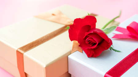 Red rose and gift box on a pink background. 免版税图像