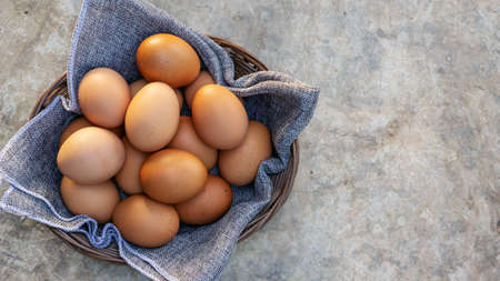 Chicken eggs in a basket on a gray background.