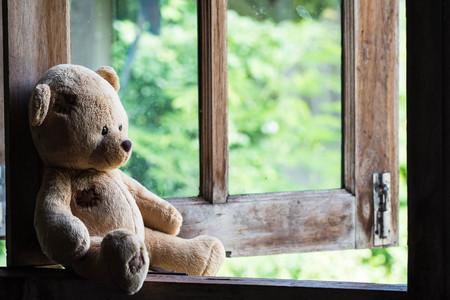 테디 앉아서 창에서 기다리고 곰. 스톡 콘텐츠