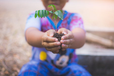 hand of children holding plant and soil with bokeh and nature background, save the world and World Environment Day concept at sunny day. subject is blurred Фото со стока