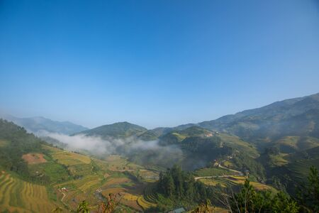 beautiful view of rice terrace in Mu Cang Chai, Vietnam, farmer implant on high mountain. soft focus.