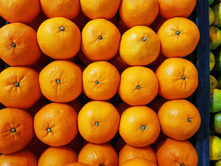Full Frame Vibrant Background of Carefully Arranged Fresh Orange Fruits