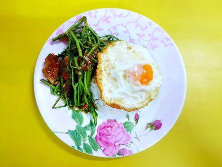 Rice with Fried Crispy Pork and Egg