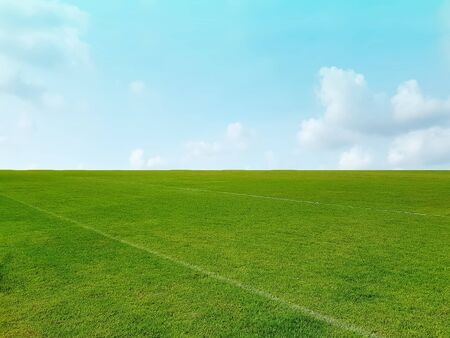 Background of Green Grass Field and Horizon Against Blue Cloudy Sky
