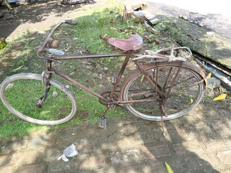 old onthel bike with grass