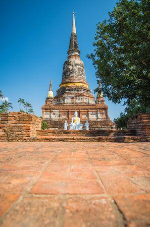 chaimongkol: Wat Yai Chaimongkol, Ayutthaya Province, Thailand
