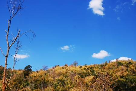 Landscape blue sky in Thailand  photo