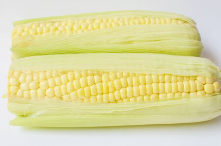Ripe corn on the cob  photo