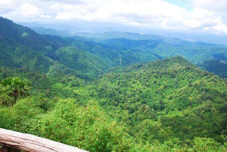 blue mountains tree frog: Landscape of mountain at Doimonta nationalpark in Thailand.