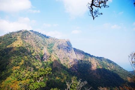 blue mountains tree frog: Landscape of mountain Stock Photo