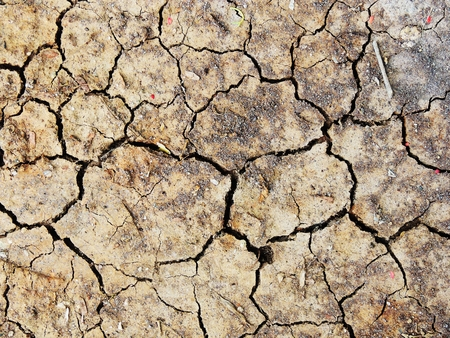cracked earth: cracked earth (Drought) texture background