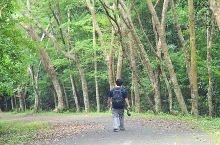 backpacker: Backpacker travel in the forest