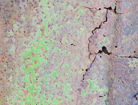 liquen: Lichen on galvanized iron wall