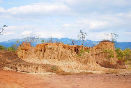 termite: Mound