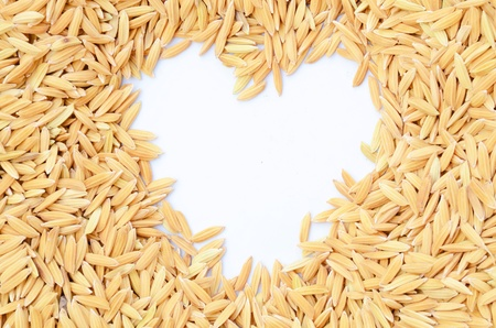 Paddy rice isolate