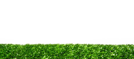 Bright and refreshing green grass. Stock Photo