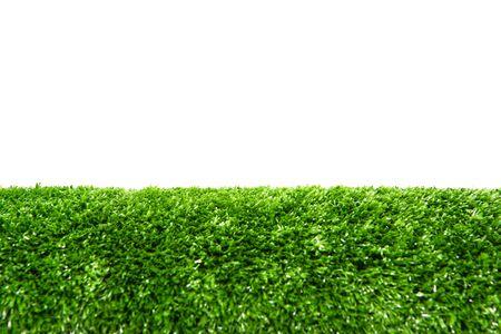 Green lawn White back