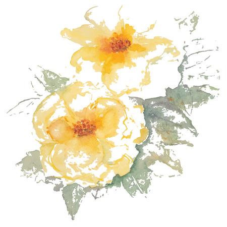 yellow roses: Rosas amarillas de la acuarela del vector Vectores