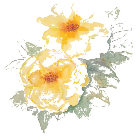 yellow roses: Yellow roses watercolor vector