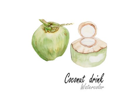 Coconut drink.Hand drawn watercolor painting on white background.Vector illustration Illustration
