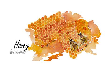 miel de abeja: Honey.Hand acuarela dibujada en blanco background.Vector ilustración