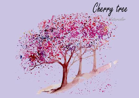 Cherry trees.Hand acquerello disegnato pittura .Vector illustrazione