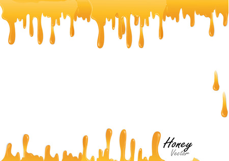 Honey drop background vector illustration