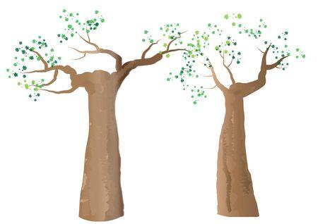 baobab: baobab trees on white background,vector illustration