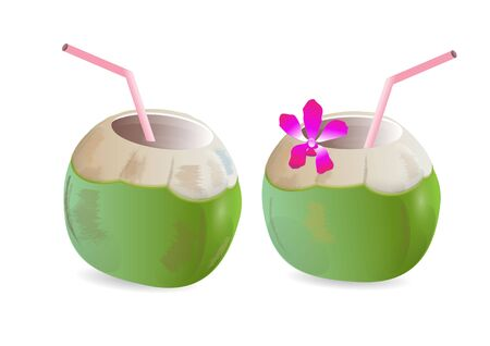 tropical drink: Coconuts drink with  straw and flowers ,vector illustration