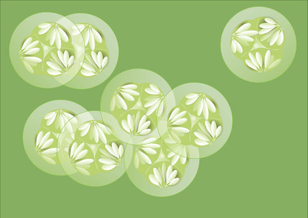 cucumber slice: Cucumber and slice cucumbers on white background,vector illustration