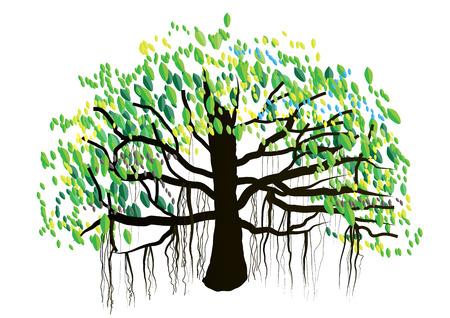 Banian, grand arbre sur fond blanc, illustration vectorielle Banque d'images - 48101721
