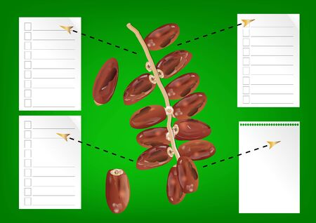 date palm: Date fruit on green background with paper for writing information
