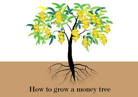 grow money: Tree, Tree with leaves and golden money symbol is the fruit of tree,with roots vector illustration,text how to grow a money tree