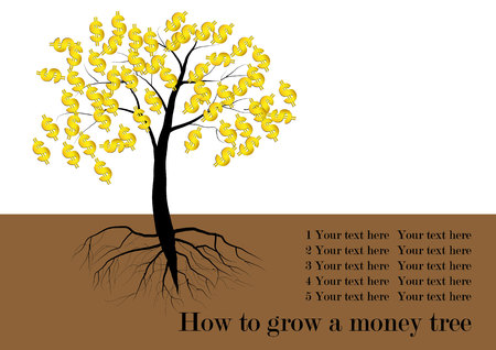 fruit tree: Tree, Tree with leaves and golden money symbol is the fruit of tree,with roots vector illustration,text how to grow a money tree