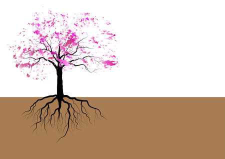 Cherry blossom tree with roots ,pink watercolor design,vector illustration Ilustração